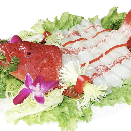 Cá Mú Đỏ 2