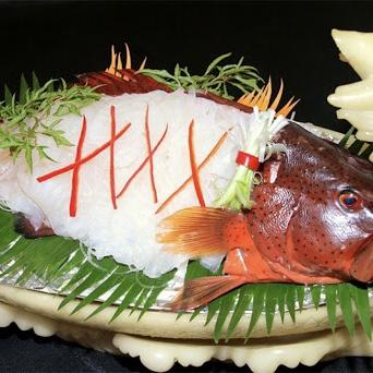 Cá Mú Đỏ 3